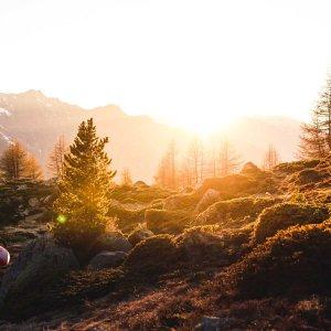 Lees meer over het artikel #4 Waarom het fijn is om soms stil te zijn